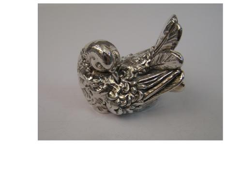 Pigeon / Dove